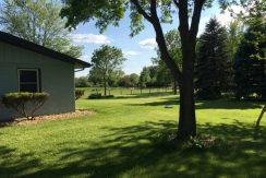Green Grass Yard